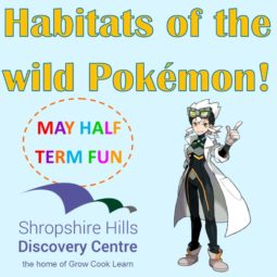 Habitats of the Wild Pokemon