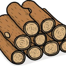 Summer Holiday – Bushcraft with Wood