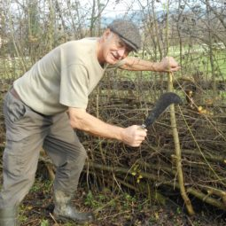 Hedge Laying Course