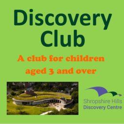 Discovery Club – Damselflies, dragonflies and demoiselles
