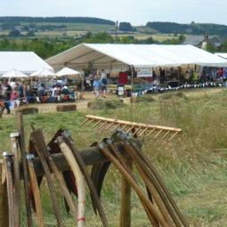 Hay Meadow Festival