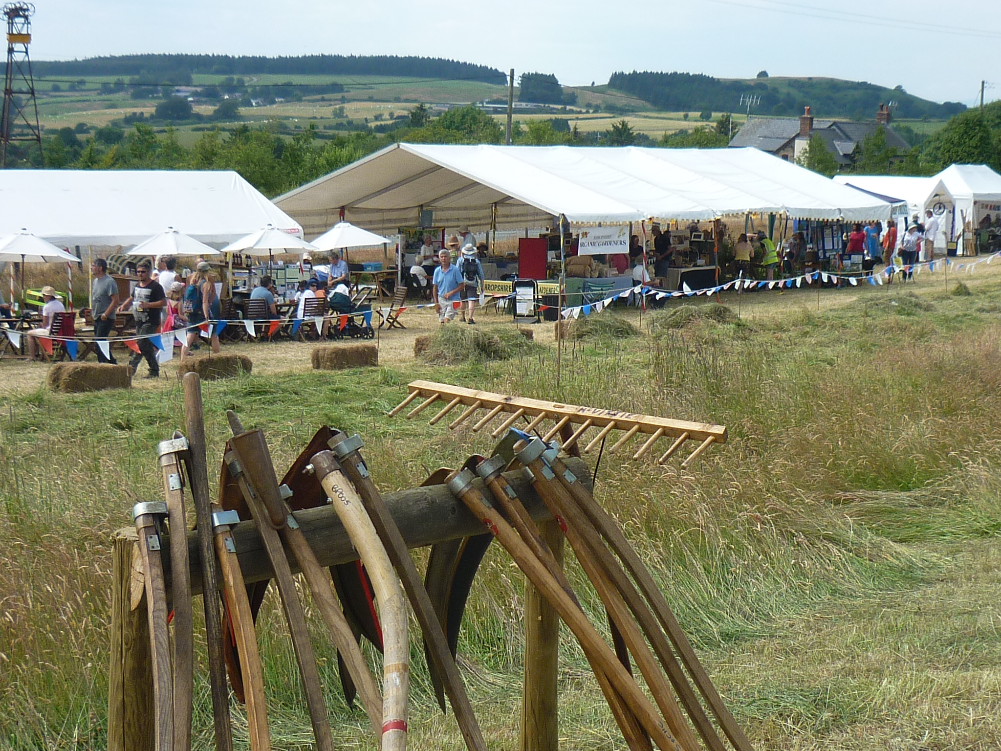 Hay Meadow Festival – Cancelled