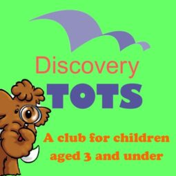 Discovery Tots – Meet a Dragonfly