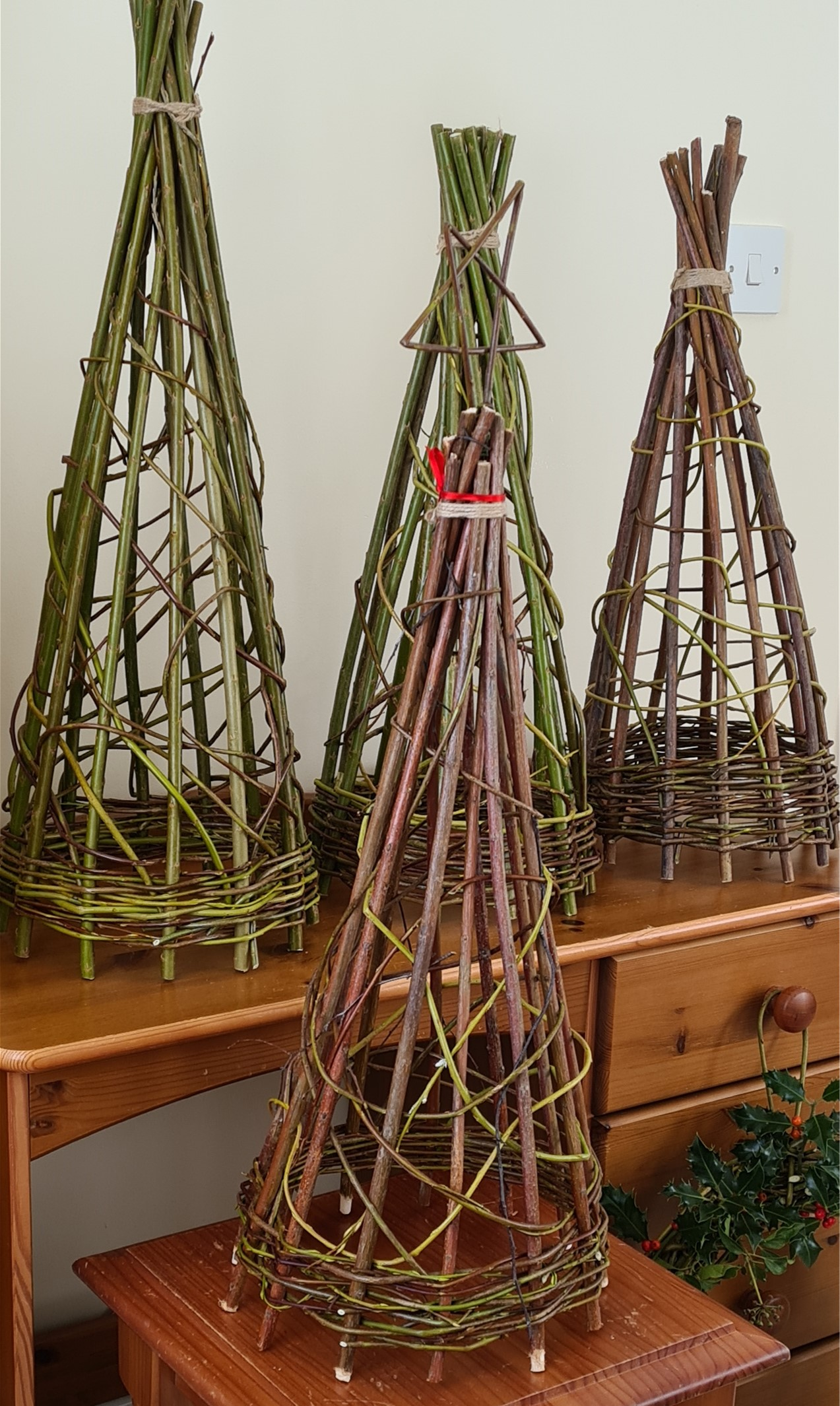 Green Willow Weaving Course